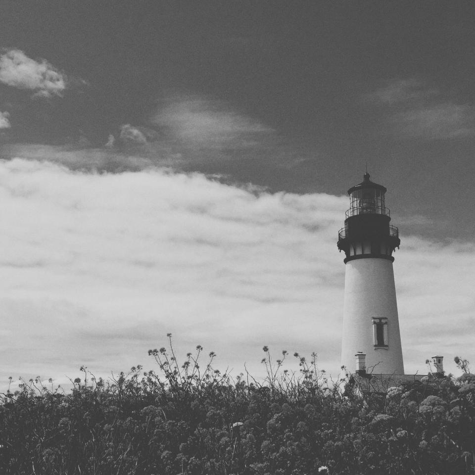 lighthouse, plants, flowers, garden, nature, architecture, sky, clouds, black and white