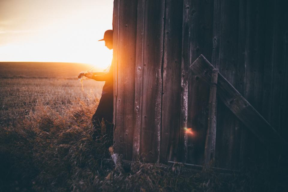 guy man sunset wooden grass field cap guitar instrument musical guy people outdoor