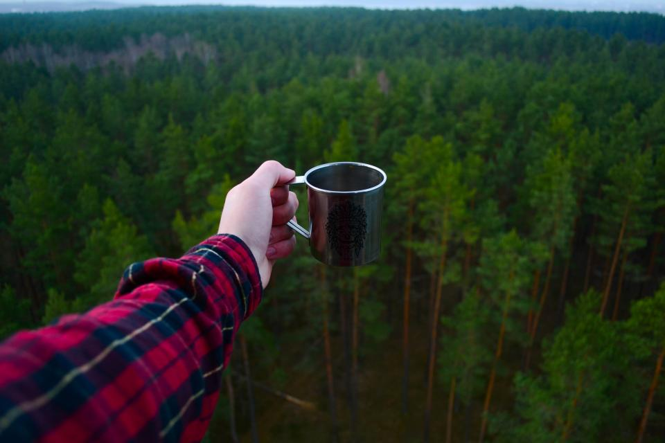 green, plant, nature, forest, arm, hand, mug, cup, travel, outdoor, adventure, view