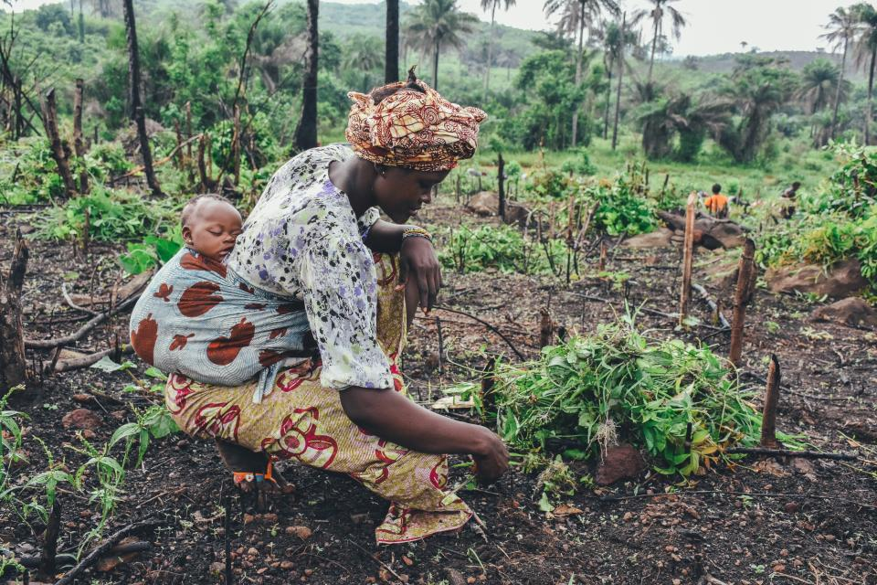 woman, child, baby, sleeping, tired, family, people, harvest, agriculture, farm, plants, leaves, soil, nature, outdoors, work, labour