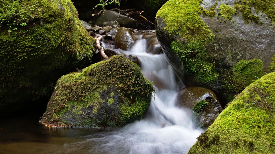 rocks, nature, green, moss, stream, water