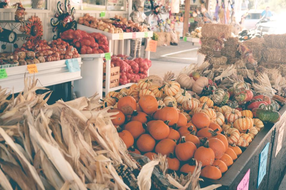 food vegetables market corn pumpkins halloween hay