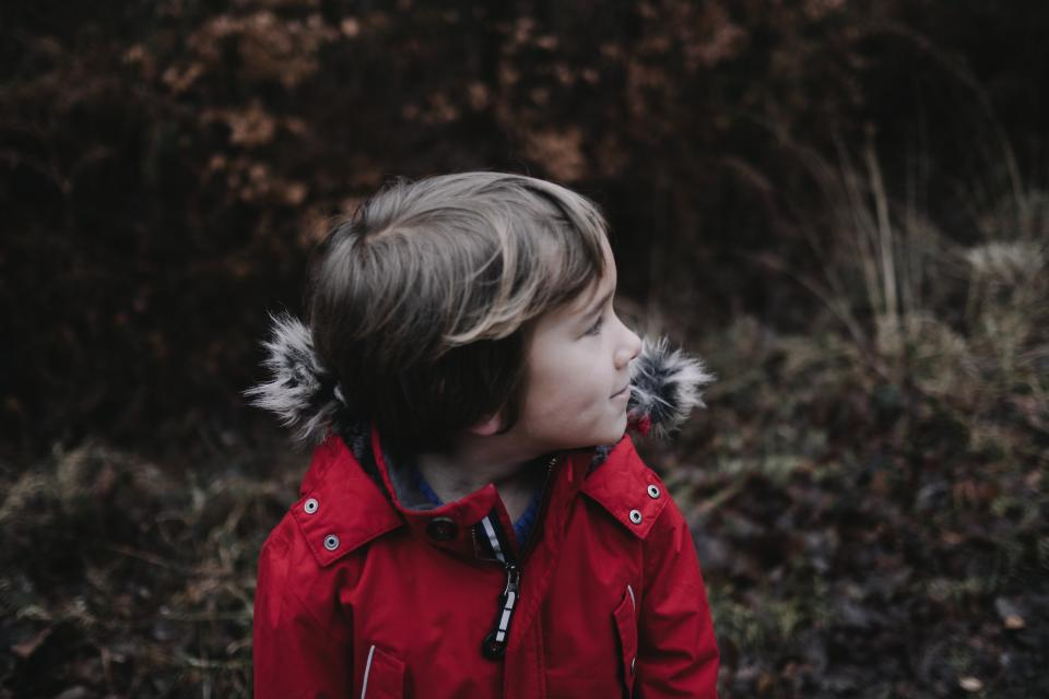 people, boy, child, jacket, red, bokeh, blur, plants, grass, alone, trees, nature