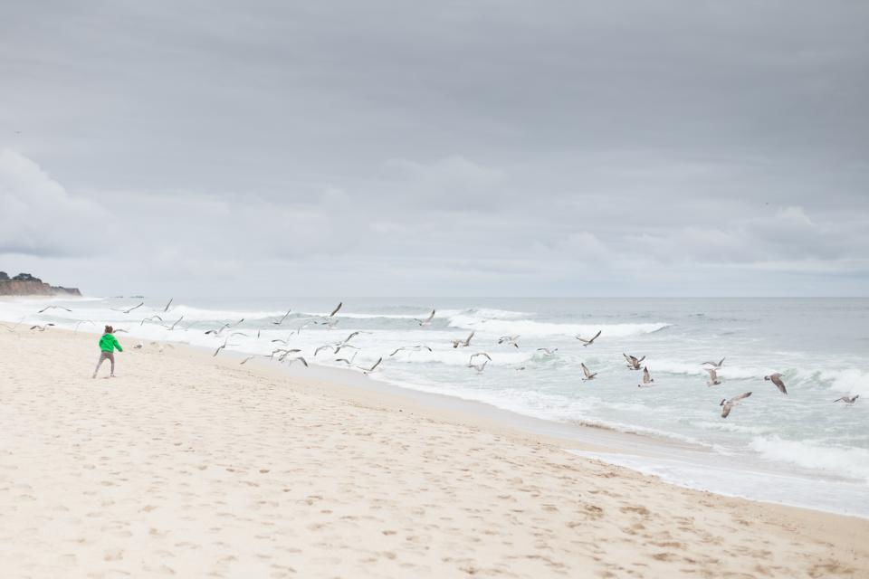 sea, ocean, blue, water, nature, white, sand, beach, shore, cloud, sky, people, alone, kid, child, birds, flying