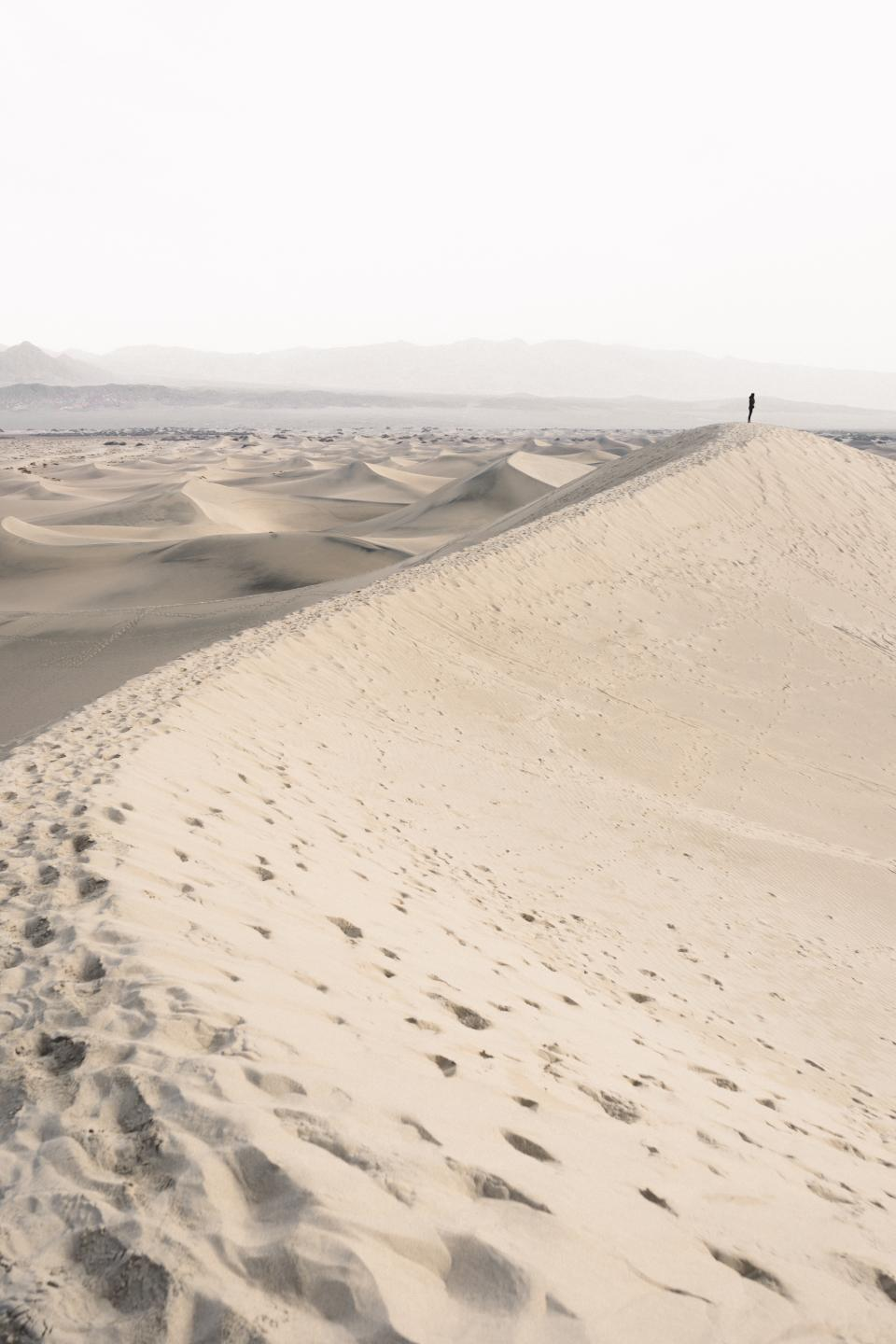 people, man, alone, travel, adventure, desert, footsteps, nature