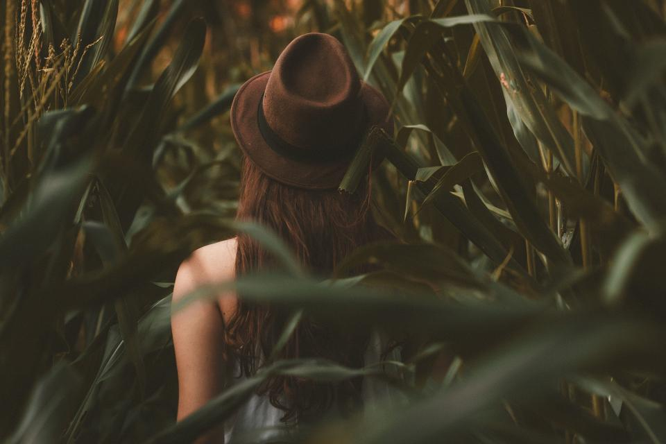 people girl woman alone hat fashion model cornfield nature farm blur