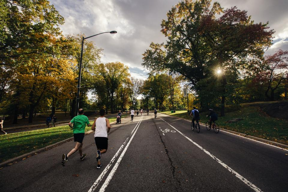 running, fitness, exercise, runners, people, street, road, bikes, bicycles, biking, cyclists, trees, nature, sunshine, city, friends, health