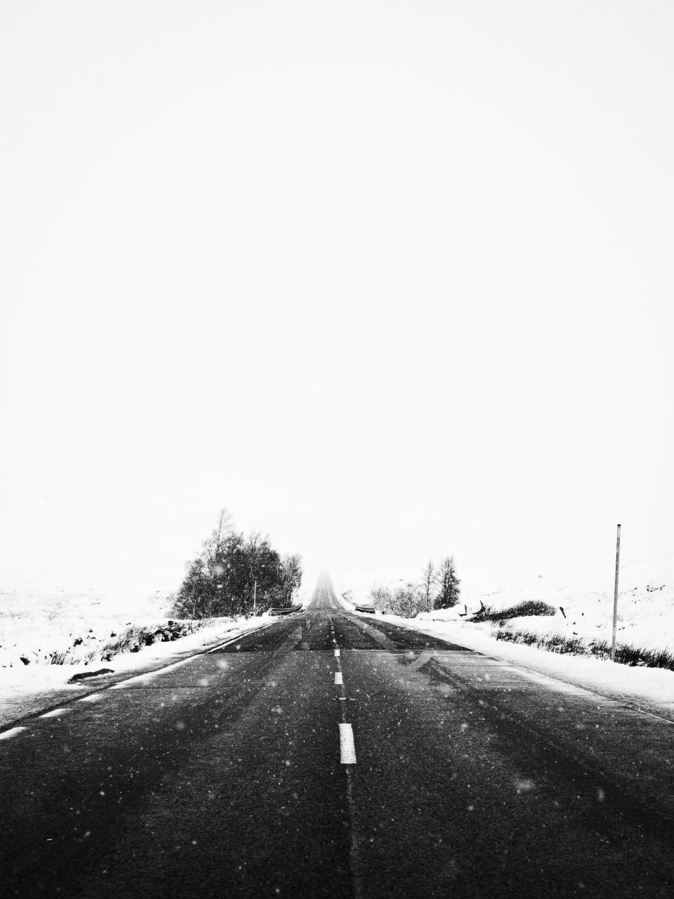 snow, winter, white, cold, weather, ice, trees, plants, nature, road, street, travel, adventure, black and white, monochrome