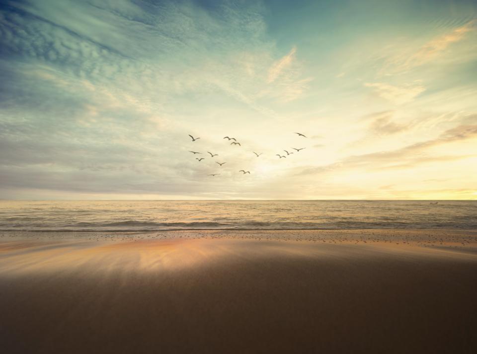 sea, ocean, nature, waves, adventure, travel, sky, clouds, birds, flying, dark, sand