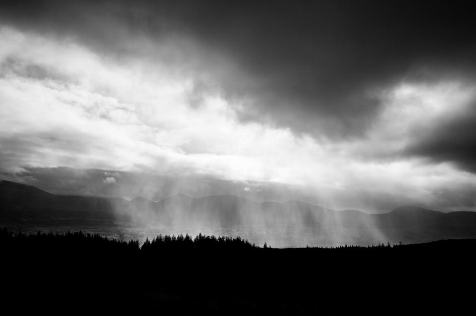 black and white, fog, trees, plant, mountain, cloud, sky, forest, landscape