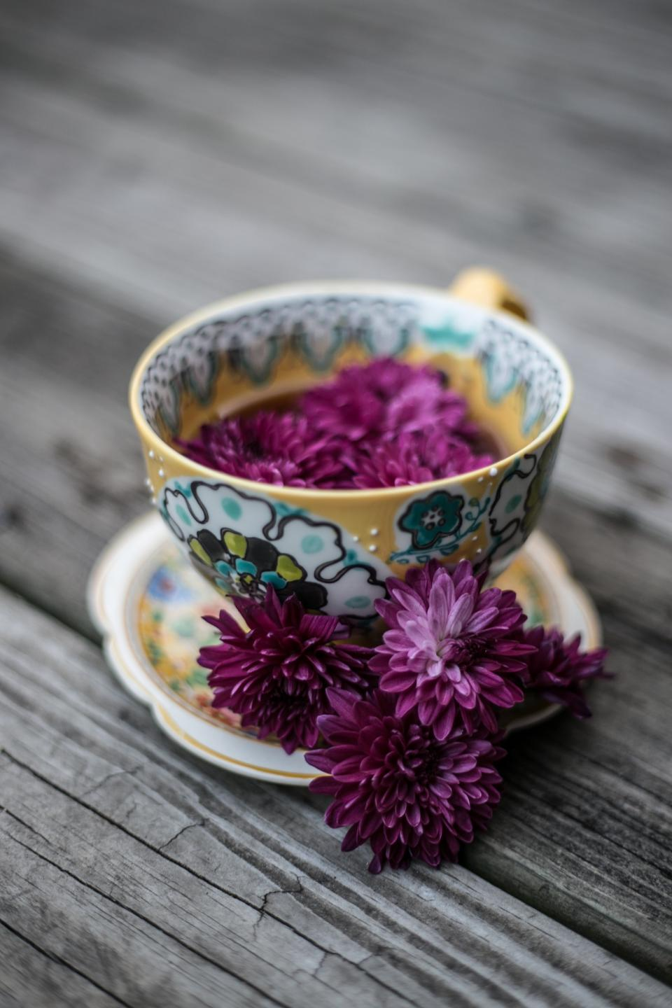 purple, violet, color, petal, flower, plate, bowl, wooden, table, blur