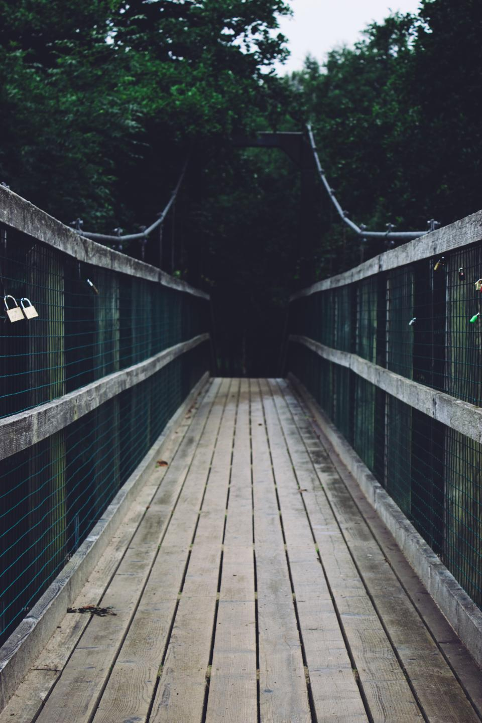 pathway, bridge, wood, wire, lock, travel, outdoor, trees, plant, nature, forest