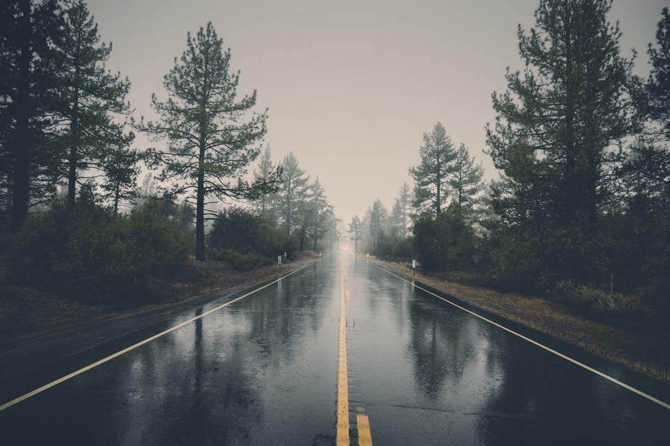rural, road, pavement, rain, wet, raining, trees, nature, storm, sky, grey, cloudy, clouds