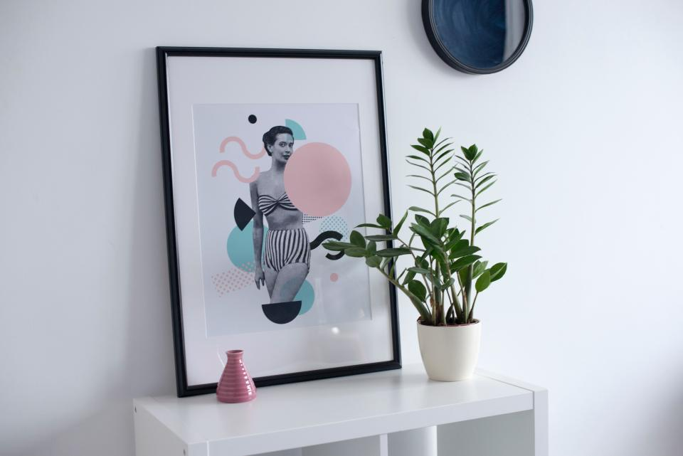 photo picture frame shelf interior plant pot white room wall design architecture