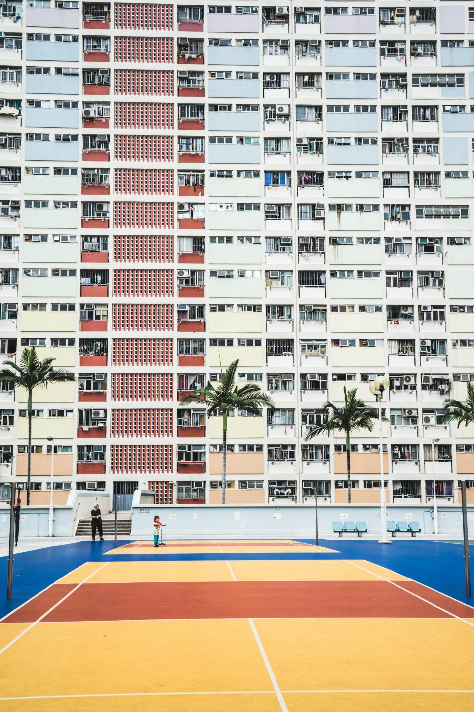 hotel, building, city, urban, guy, player, man, basketball, court, ring, coconut, trees, windows, panes, chair