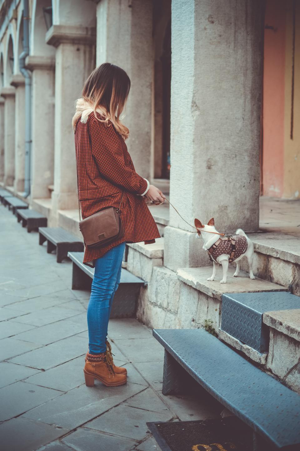 people, woman, fashion, boots, street, dog, puppy, pet, stroll