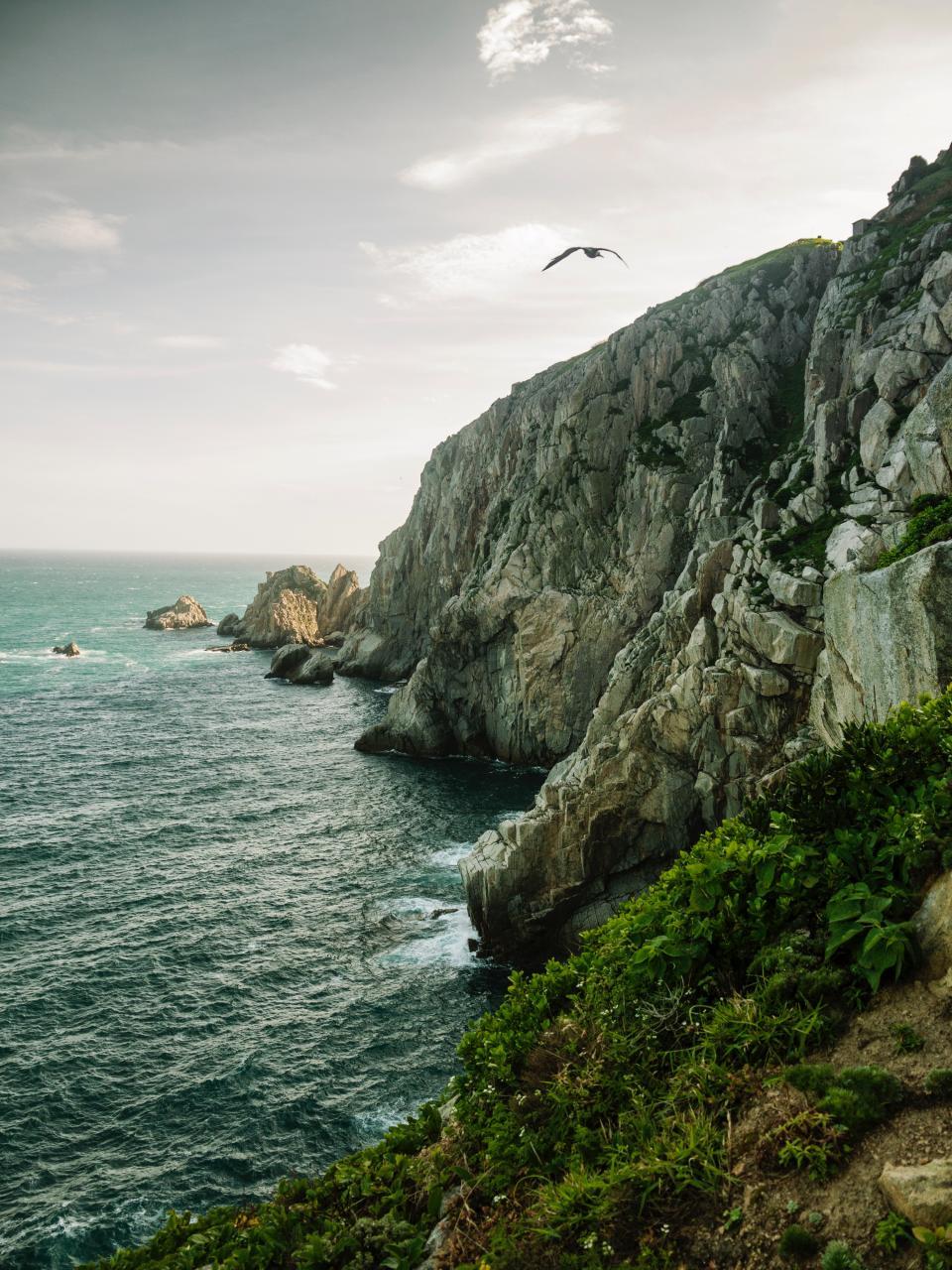 sea, ocean, water, wave, nature, coast, rock, green, grass, hill, mountain, landscape, cliff, cloud, sky, bird, flying, animal
