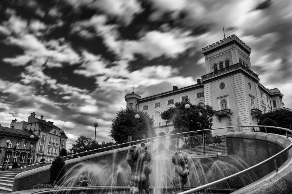 architecture, building, structure, clouds, sky, black and white, statue, water, fountain, light, bulb, house, trees, village
