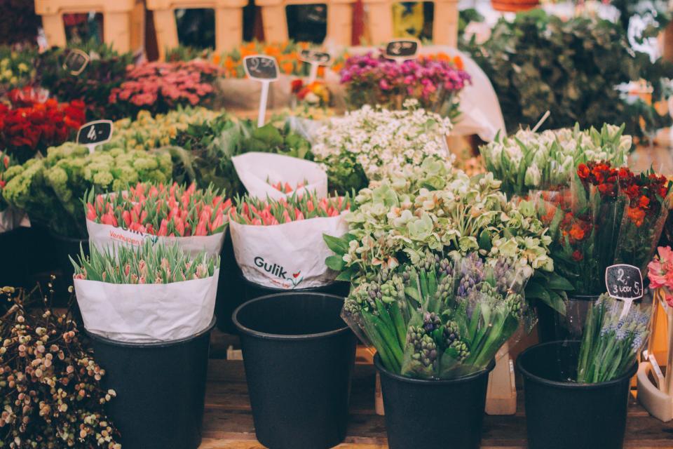 flower, bouquet, petal, bloom, garden, plant, nature, autumn, fall, store
