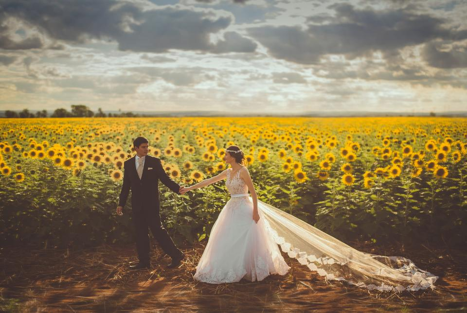 flowers, sunflower, marriage, couple, love, happy, holding hands, gown, suit, wedding, field, clouds, sky, man, woman, people