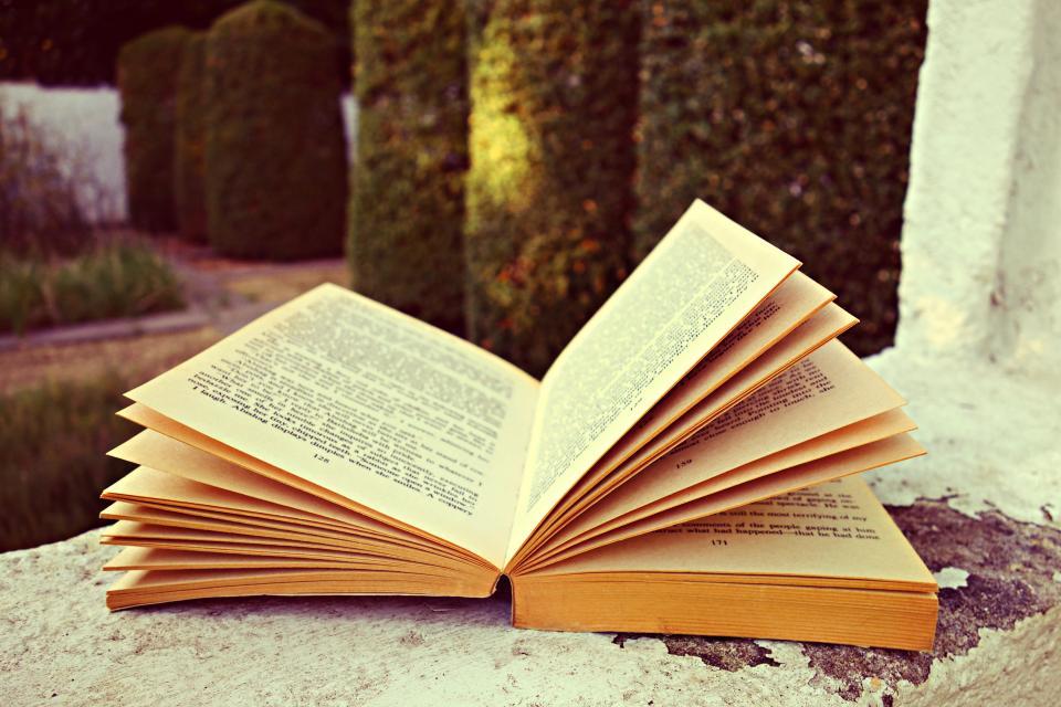 book words letters study read school outside window plants grass