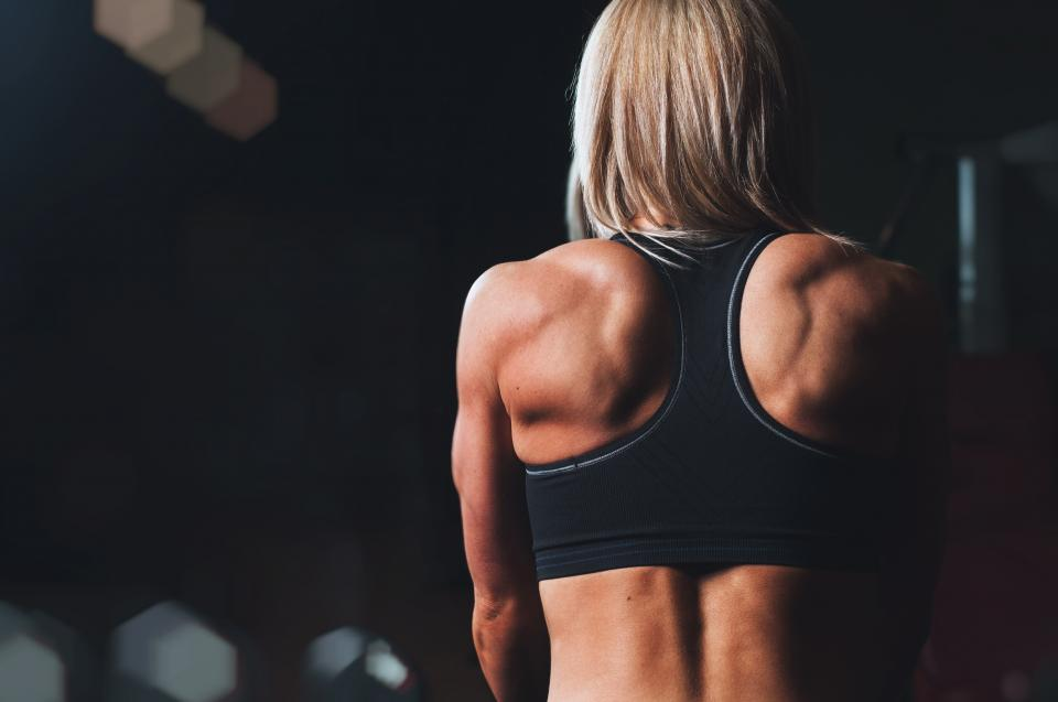girl, woman, fitness, workout, gym, muscles, people, back, health